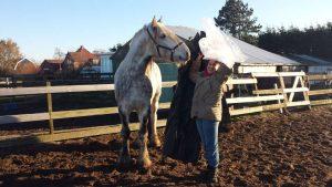 Paarden trainster