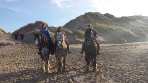 Paarden training op het strand