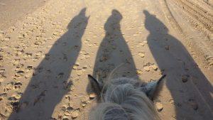 Paarden training langs het strand