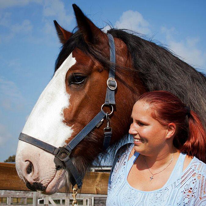 paarden-trainerster-Playik
